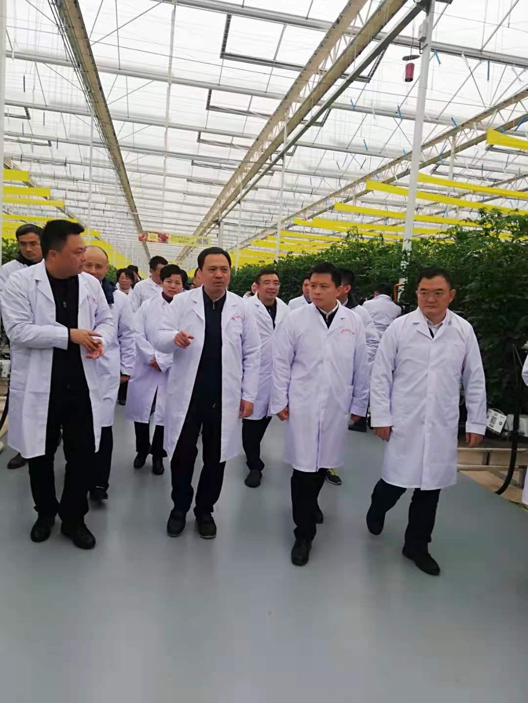 南昌市市委副书记严允莅临进贤县现代智慧农业项目开展调研工作